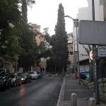 Районы Хайфы